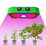 Lazcon LED Grow Light para el trabajo en el jardín Premium plantas de interior Grow Light 1000 W...