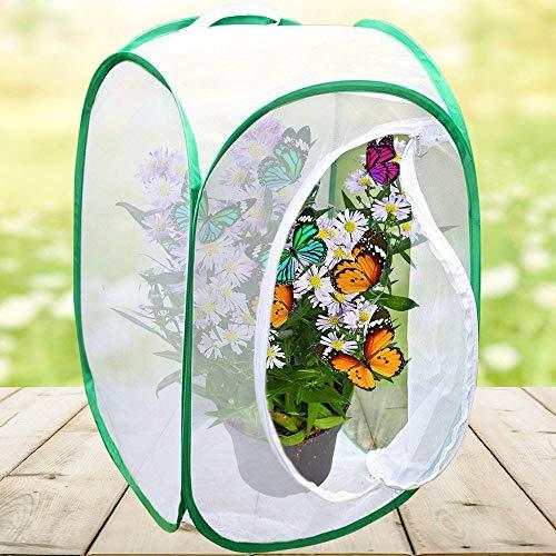 jixiang Insekten-Schmetterling Habitat Tragbarer Insekten-Monarch-Schmetterlings-Käfig, Faltbares Terrarium, 40,6 x 61 cm (Grün, M)