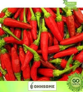 FERRY Hohes Wachstum Seeds Nicht NUR Pflanzen: Seed Gemüsesamen Seltene Thai Chili Samen - Chilli -Red Samen Veg Samen TerracSEEDing Home Seed 20 pro Paket