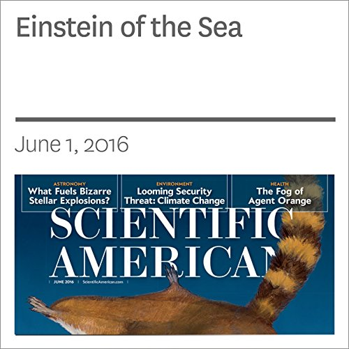Einstein of the Sea audiobook cover art