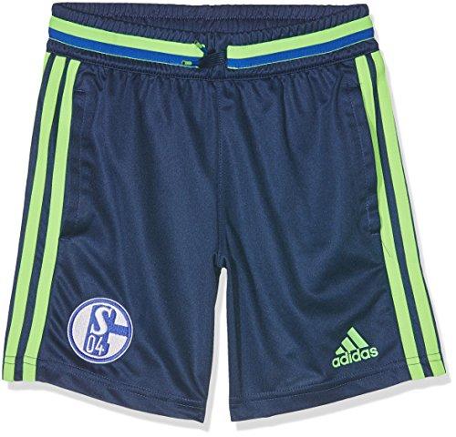 adidas Kinder Schalke 04 Shorts, Dark Blue/Solar Green, 164