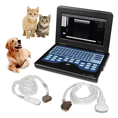Micro-Convex and Convex 2probes Animals Vet Veterinary Ultrasound Scanner CMS600P2-VET