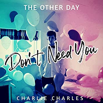 Don't Need You (feat. Charlie Charles)