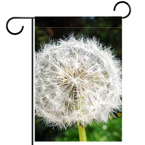 Tizorax weiße Pusteblume Samen Gartenflaggen Banner wasserdicht Willkommen Heim Dekoration Urlaub Hof Flagge 30,5 x 45,7 cm, Textil, multi, 28x40in