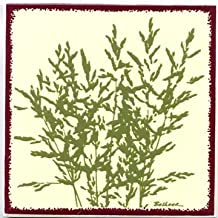 product image for Besheer Art Tile Botanical Meadow Grass Tile, Botanical Wall Plaque, Botanical Trivet-BB-8, Bedford New Hampshire. U.S.A.