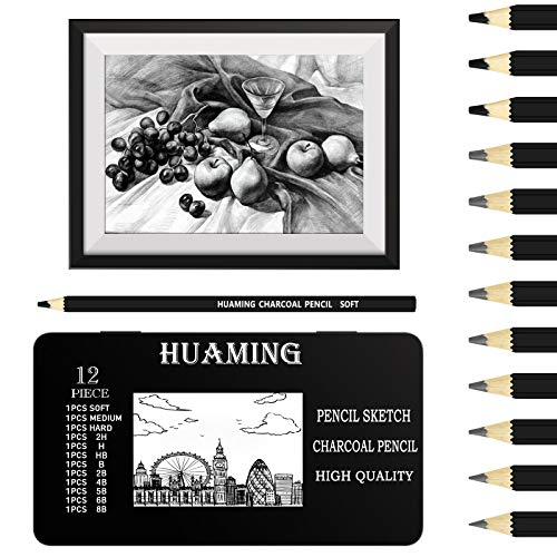 Juego de 12 lápices de boceto, 9 lápices de dibujo profesionales 2H H HB B 2B 4B 5B 6B 8B y 3 lápices de dibujo de carbón para niños adultos y principiantes