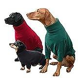 Hotterdog Fleece Jumper (from Equafleece)Medium Red