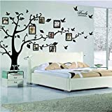 Rainbow Fox Large Family Tree Wall Decal. Peel & stick vinyl sheet, easy to install & apply history decor mural for home, bedroom stencil decoration. DIY Photo Gallery Frame Decor Sticker