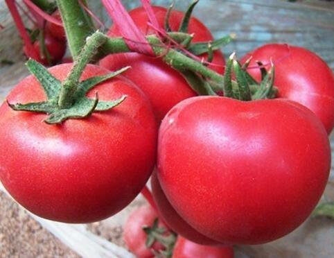 100 pcs / paquet Précipité nouvelles Plantes d'extérieur Promotion Jardin graine de tomate fruits en pot Bonsai Balcon Légumes 5 graines