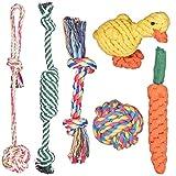 Achort Hundespielzeug Set, 6er Set Haustier Hund Geflochten Seil Spielzeug Set Spielzeug Für Puppy Kleine Mittlere Hunde Kauspielzeug