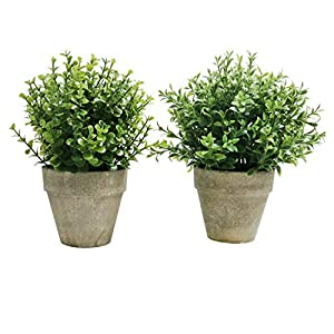 U'Artlines 2 Pack Artificial Topiary Shrubs Fake Greenery Plants Mini Potted Lavender for Tabletop Bathroom Home Decoration