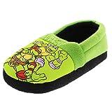 TMNT Teenage Mutant Ninja Turtles Kids Aline Slippers (7-8 Toddler M, TMNT Green)