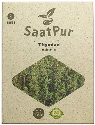SaatPur Thymian Samen, Saatgut für ca. 300 Pflanzen