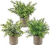 SHACOS Set de 3 Plantas Artificiales Maceta Pequeñas Artificial Flores Decorativas para Exterior e Interior Dormitorio Cocina