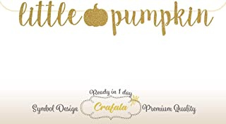 Little Pumpkin Glitter Banner | Baby Shower Banner Gold Sliver New Born Decor, Modern Baby Shower, Pregnancy Banner, Baby Announcement