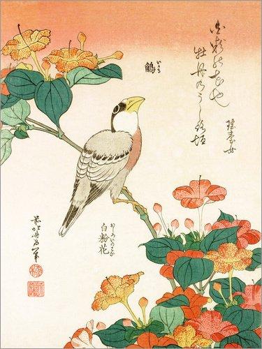 Posterlounge Holzbild 30 x 40 cm: Mirabilis Jalapa und Kernbeißer von Katsushika Hokusai