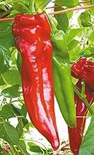 Best italian hot pepper seeds Reviews