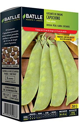 Semillas Leguminosas - Guisante de enrame Capuchino 250g - Batlle