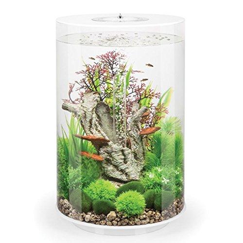 biOrb Aquarium in Zylinder-Form, mit mehrfarbiger LED-Beleuchtung und Fernbedienung, 30 l