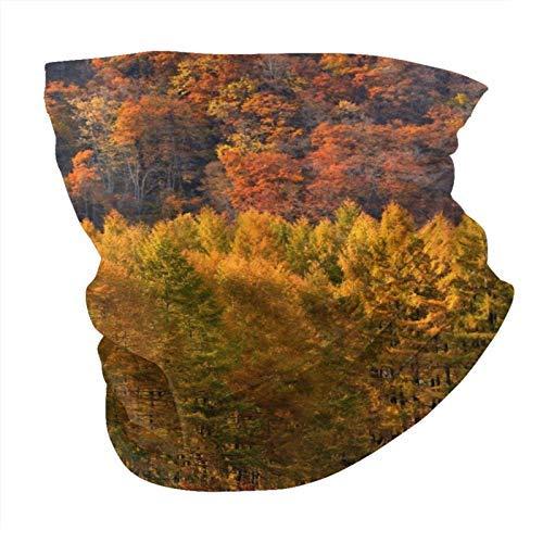 Colorido otoño bosque cuello polaina cara Bandana UV protección solar, bufanda para la cabeza para la aptitud al aire libre, correr, ciclismo, motociclismo
