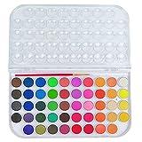 Set de Pintura de Acuarela,48 Colores Cajas de Acuarelas Colores Pigmento sólido Colores Acuarela Conjunto,para Artistas, Estudiantes o Principiantes