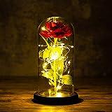 La Bella y La Bestia Rosa Encantada,Rosa de Seda Roja Elegante en Cúpula de Cristal con Base Pino Luces LED para El día de San Valentín,Día de la madre,Ambiente romántico