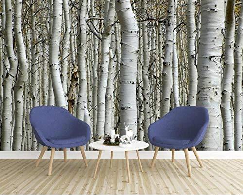 3D fotobehang wandschilderij berkenbos sfeer High End TV 3D woonkamer achtergrond muur 300*210 F