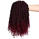 2 Packs Pre-Twisted Spring Twists Synthetic Crochet Hair Extensions 12 inch 24 strands/pack Ombre Crochet Possion Twist Braids Fiber Fluffy Curly Twist Braiding Hair Bulk (T1B/BUG#)
