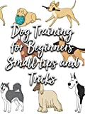 Dog Training for Beginners Small tips and Tricks