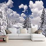 Papel Tapiz Mural 4D Personalizado,Nieve Invernal Paisaje Forestal Seda Fondo Photo Tv Hd Grandes Murales Art Imprimir Imagen De Póster Para El Salón Dormitorio Estudio Decoracion,60Cm(H)×120Cm(W)