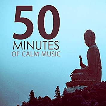 50 Minutes of Calm Music - Relaxing Tracks for a Quick Meditation Session