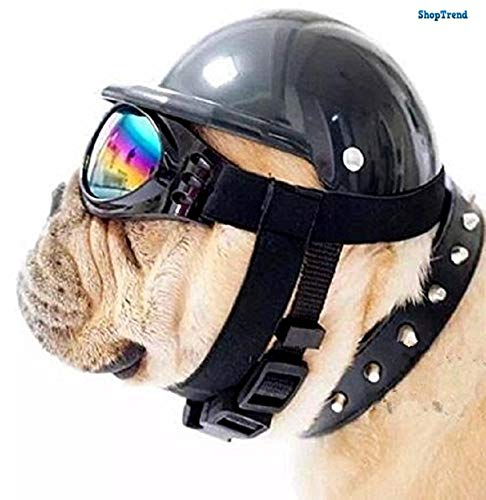 ShopTrend Dog Hat with Goggles/ABS Hard Plastic Ridding Cap Toy 3 Sizes with 6 Colors (1 Hat + 1 Goggles/Set) (L, Black)