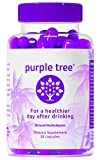 Purple Tree Hangover Cure & Prevention Pills | Dihydromyricetin (DHM), Milk Thistle, Vitamin B,...