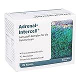 Adrenal-Intercell Kapseln, 120 St
