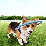 Bhjcui 盲目リング 盲目ペット用 犬 猫 老犬 高齢犬 保護ベストリング ハーネス 保護ベスト ペット保護リング フェイスガード 大きさ調整 通気性 防錆 軽量 介護用品 衝突防止(XS)