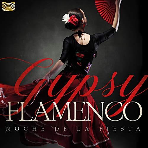 Gypsy Flamenco-Noche de la Fiesta