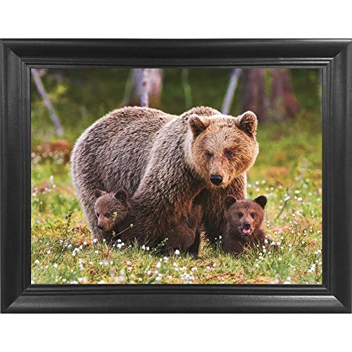Brown Bear with Cubs 3D Poster Wall Art Decor Framed Print   14.5x18.5   Lenticular Posters & Pictures   Memorabilia Gifts for Guys & Girls Bedroom   Forest Wildlife & Hunting Animal Picture for Home