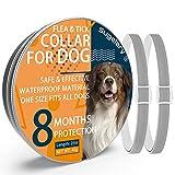 Collar Antiparasitario para Perro, Protección de 8 Meses Collar Antiparasitario de Perro Impermeable Ajustable Collar de Pulgas para Perros Mejorado con Aceites Esenciales Naturales (2pcs)