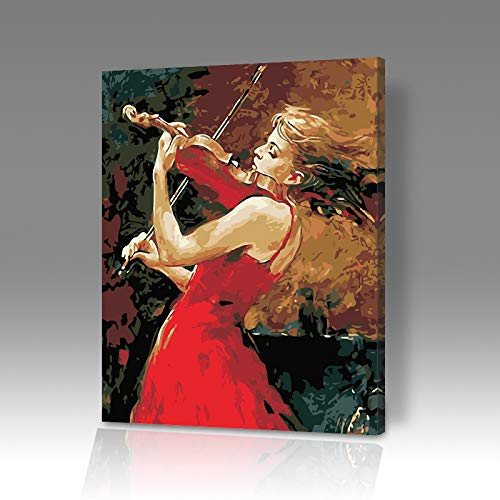 DIY Digitale Olieverfschilderij Kleurplaten Thuis Achtergrond Decoratie Viool Landschap Stilleven Animal Figuur 6618 Omlijst 40x50cm