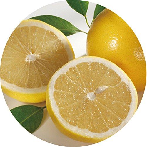 生活の木『HerbalLifeグレープフルーツ精油』
