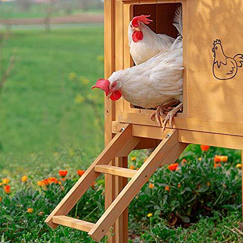 Ferplast Hühnerstall für Legehennen HEN HOUSE 30 für den Außenbereich, aus widerstandsfähigem, umweltfreundlichem FSC Holz, für ca. 6 Hühner, Zubehör inklusive