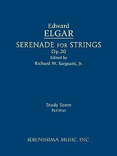 Serenade for Strings, Op.20: Study score