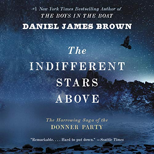Page de couverture de The Indifferent Stars Above