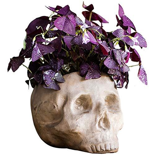 Bcaer Multifuncional Pot Pot Cráneo Multifuncional Halloween Contenedor Regalo Plantas en maceta, Contenedores, Jardineras Humano Cráneo Palillo Flor Macetero Cráneo Flor Decoración
