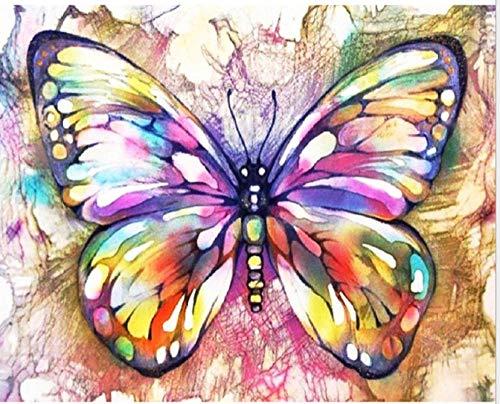 dxefdmoin Bricolaje Pintura Digital Manual para Colorear Acuarela Pintura decoración del hogar Pintado Mariposa