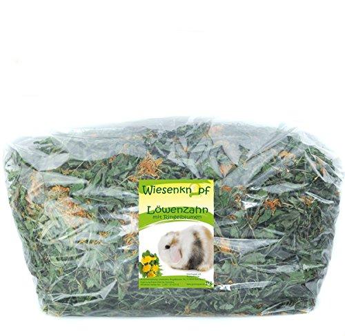 Wiesenknopf Löwenzahn mit Blüten 1kg Kaninchenfutter