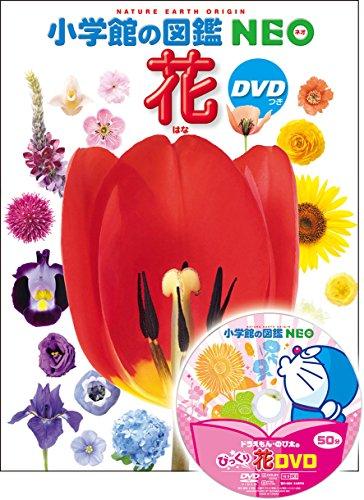 DVD付 花 (小学館の図鑑 NEO)