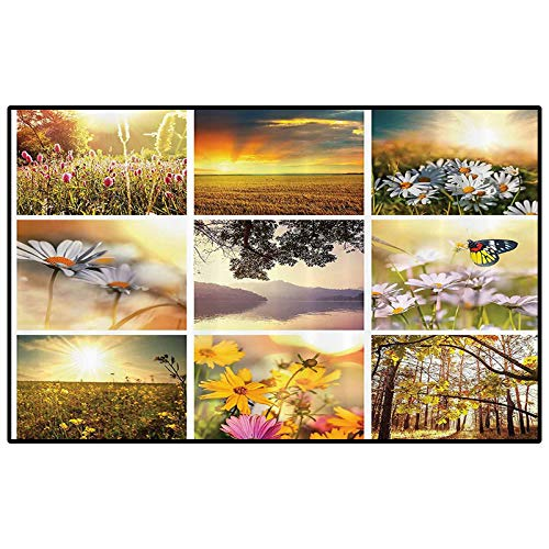 Home Decor Collection Rugs for Bedroom Kitchen Rugs and mats Floral Spring Collage with Horizon and Misty Sunset Seasonal Elements Butterflies Decor Carpet for Living Room Yellow Green