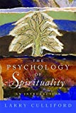 Image of The Psychology of Spirituality: An Introduction