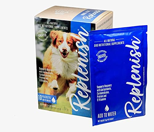 Top 10 best selling list for hydration supplements for dogs
